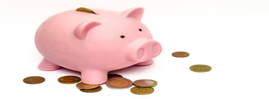 Heeft u voldoende geld achter de hand?